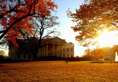 White_House_283329_n