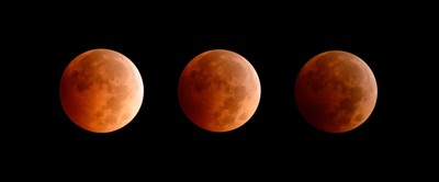 The Lunar Eclipse, October 2014