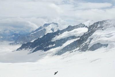 Jungfrau_DSC_0710