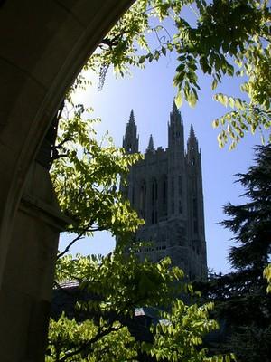 Princeton University_DSCN4048-DA.jpg