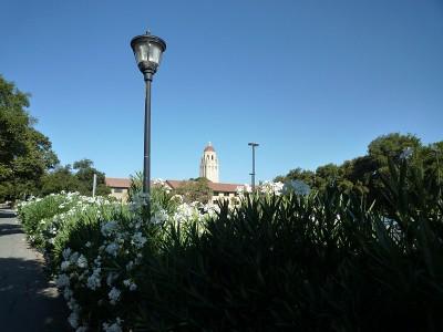 Stanford_P1010983