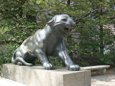 Princeton Tiger, Princeton University